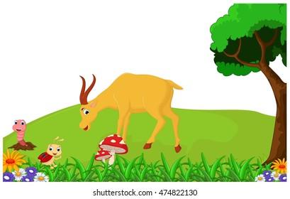 deer cartoon
