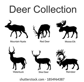 Deer collection vector silhouette illustration isolated on white background. Mountain nyala antelope. Moose elk. Reindeer buck. Red deer grassing. Waterbuck african deer. Sika symbol.
