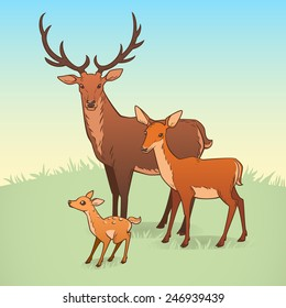 Deer family. A deer, a doe and a fawn. Vector illustration.