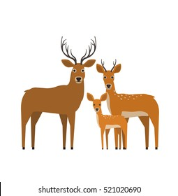 deer family in flat style on white background