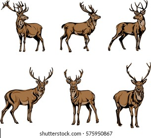 deer, deer figure, vector, illustration, black, color, silhouette, stamp