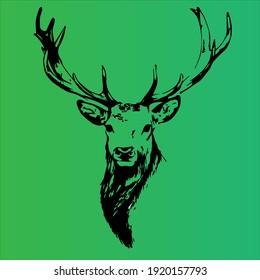 deer in gradient green color background
