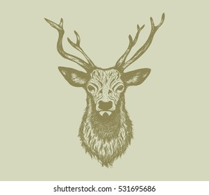 Deer Head illustration with handrawn style, vector illustration.