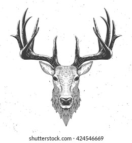 deer head on white, hand drawn vintage illustration