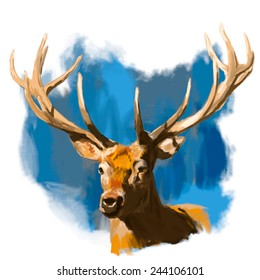 Deer head realistic hand drawn vector illustration