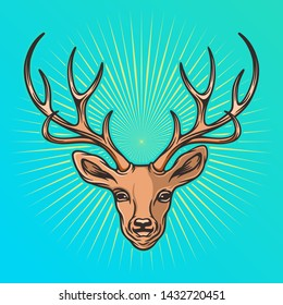 Deer head vector illustration, with bright color background.