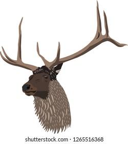 deer hind elk head