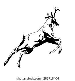 Deer ink paint. Vector version