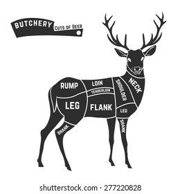 Deer meat cuts with elements and names. Isolated black on white background. Butcher shop. Vector illustration.