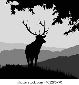 deer in the natural environment. Silhouette of deer. monotonic illustration of deer on a landscape.