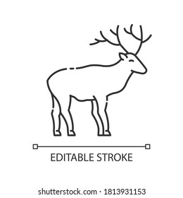 Deer pixel perfect linear icon. Animal with beautiful antlers. Forest wildlife thin line customizable illustration. Contour symbol. Reindeer, stag vector isolated outline drawing. Editable stroke