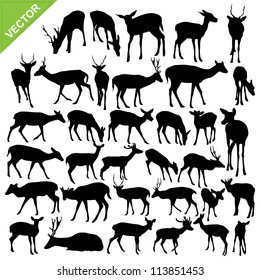 Deer silhouettes vector collections