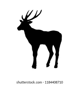 deer silhouettes, vector, illustration, isolated on white background