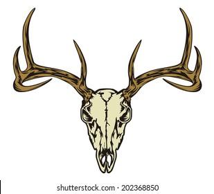 Royalty Free Deer Skull Stock Images Photos Vectors