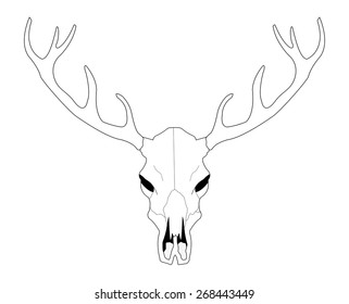 Deer skull line art vector illustration isolated on white
