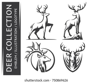 Deer, stag collections emblem, illustration. logotype on a white background