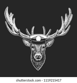 Deer Vector print for children. Capitan, pirate animal. Brave sailor. Design for kindergarten, school kids clothing, t-shirts.