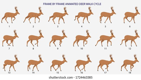 Deer Walk-cycle  Vector Illustration, Frame by Frame Animation for 2D Animation, Motion Graphics, Info Graphics