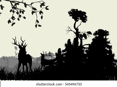 Deers and forest vector illustration
