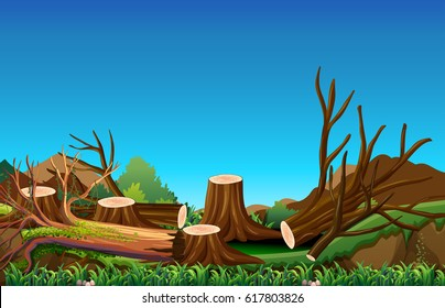 Deforestation scene in field