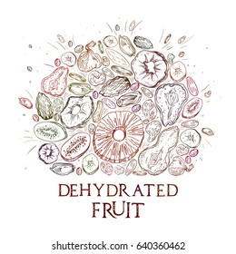 Dehydrated fruit round shape pattern in engraved style with lettering. Fully editable color vector illustrations for background or sticker.