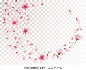 Delicate blossom elements, apple or japanese sakura petals flying and flowers falling vector illustration. Airy petals and pink flower vector elements flying design on transparent background.