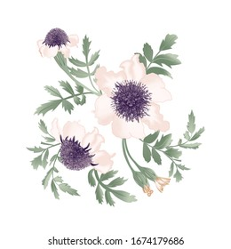 Delicate flowers bunch close up for your card design, isolated on white background. Vector floral illustration.