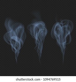 Delicate realistic smoke, fog or mist waves transparent effect. Just drop to artboard and enjoy! EPS 10 vector file
