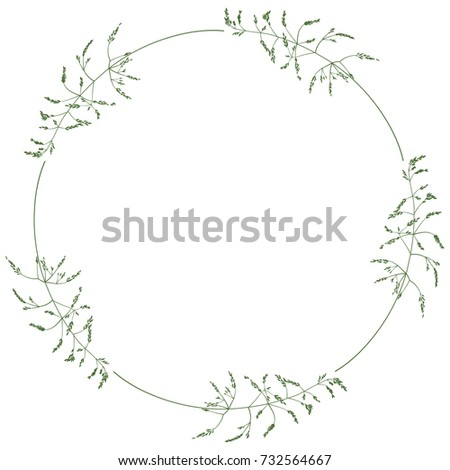 Delicate Round Floral Wreath Wild Herbs Stock Vector (Royalty Free ...