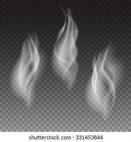 Delicate white cigarette or coffe smoke waves on transparent background vector illustration