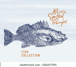 Delicates fish. Brown spotted grouper. Hand drawn with brush and ink. Delicious meal vector illustration