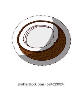 Delicious coconut fruit icon vector illustration design