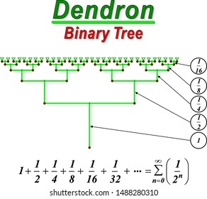 Dendron is a binary tree.