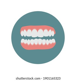 Dental care icon. Healthy teeth. Jaws isolated. Dentistry and Orthodontics treatment. Flat vector illustration. White Denture Set Closeup Isolated. Human Teeth for Medical and Toothpaste Concept.