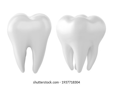 Dental model of a tooth, illustration as a concept of dental examination of teeth, dental health and hygiene.