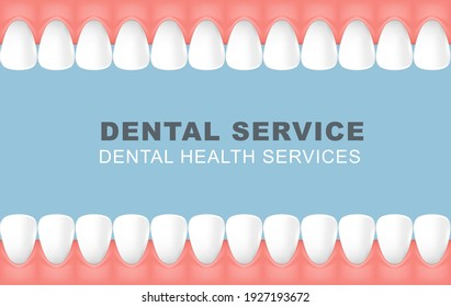 Dental poster with frame of row of teeth, foretooth line background, vector