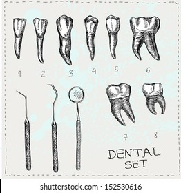 Dental set in vector. Teeth and tools.