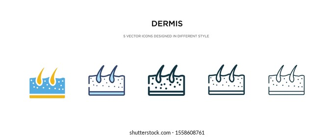 dermis icon in different style vector illustration. two colored and black dermis vector icons designed in filled, outline, line and stroke style can be used for web, mobile, ui