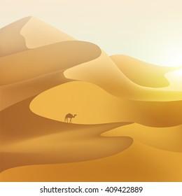 Desert dunes sunset landscape.
