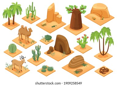 Desert elements isometric set with baobab palms cactuses succulents flora snake camel sandstones sand isolated vector illustration