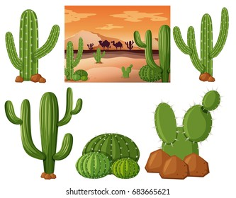 Desert field with cactus plants illustration