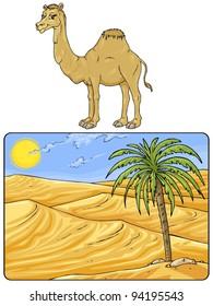 Desert Landscape with Camel - Cartoon Illustrations - Clip art