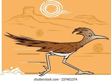 Desert Roadrunner