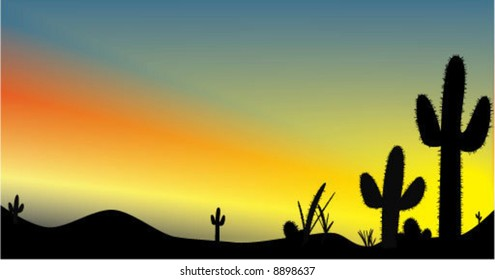 A desert sunset vector