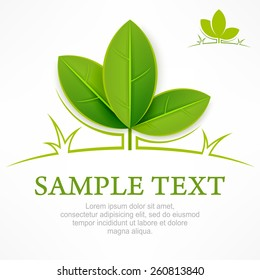 Design elements, branch with green leaves & text, vector illustration
