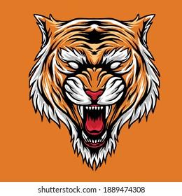 design illustratio tigers head vector