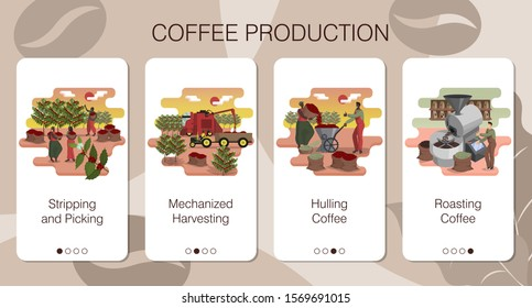 Design of mobile app to onboarding screens. Set of mobile app pages of farming company of coffee production. Stripping, picking, mechanized harvesting, hulling and roasting coffee beans. Flat vector