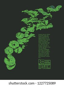 Design a poster or cover with river lotus leaves and place for your text. vector illustration