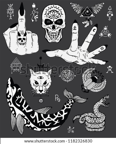 5a6ae963c Design set with scary gothic and mystic symbols - skull, dolphin, cat,  snake. Esoteric, occult and Halloween concept, mystic vector illustrations  for music ...
