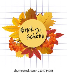 Design template Back to School with branch of rowan and maple leaves for banner or poster. Vector Illustration.